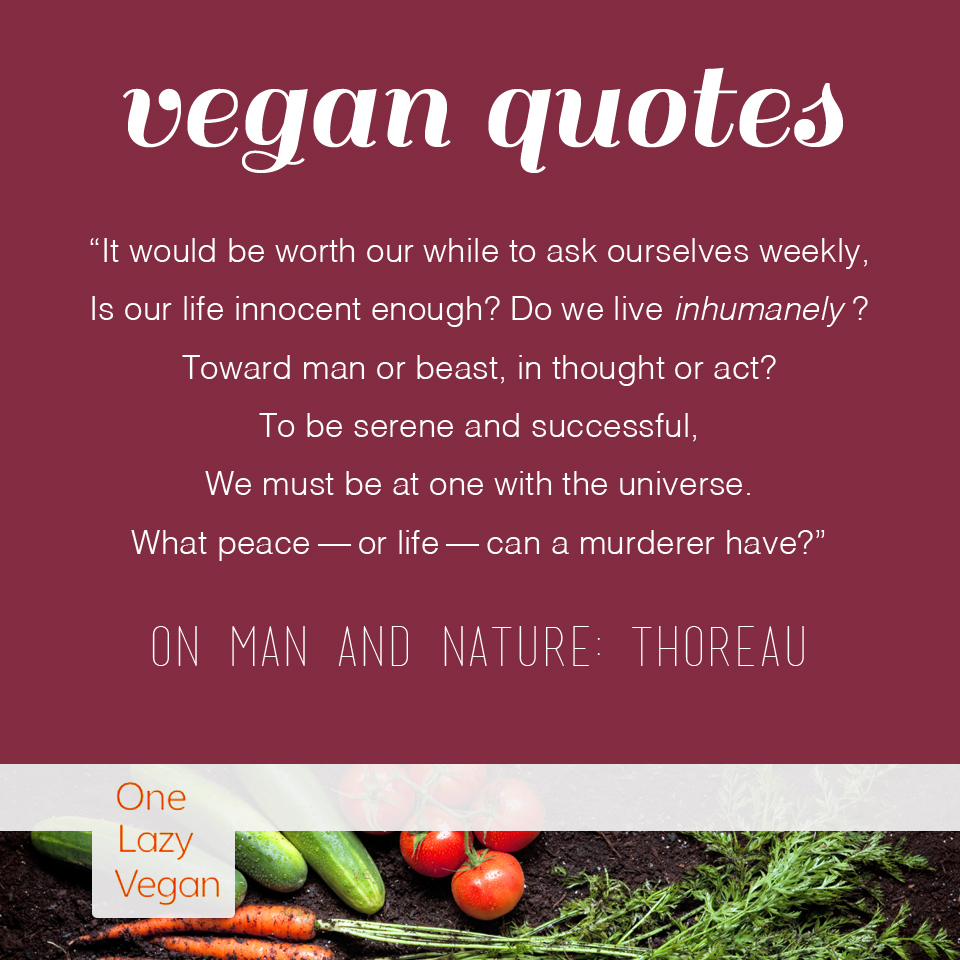 Vegan Quotes Vegan Quotes  One Lazy Vegan