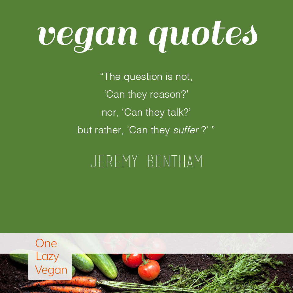 Vegan Quotes Amusing Vegan Quotes  One Lazy Vegan